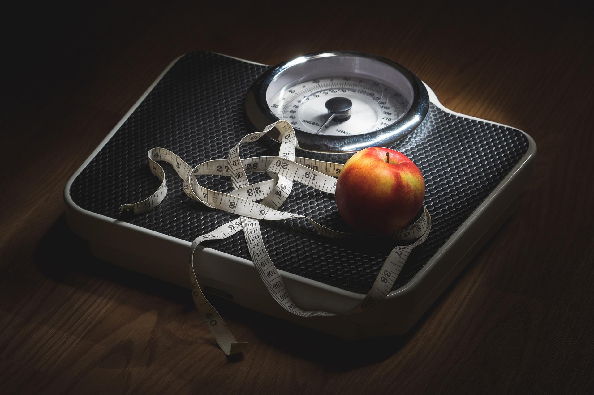 Curso Experto en el tratamiento dietético del sobrepeso y obesidad – Descuento para socios